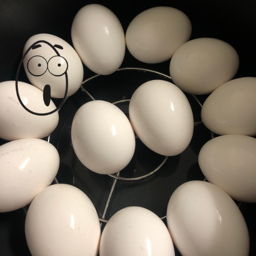 eggs on a rack in the bottom of an electric pressure cooker