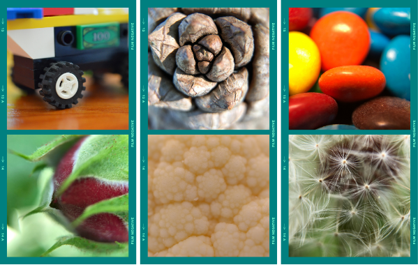 Macro images: LEGO tire, pinecone, candy, rosebud, cauliflower, and a dandelion