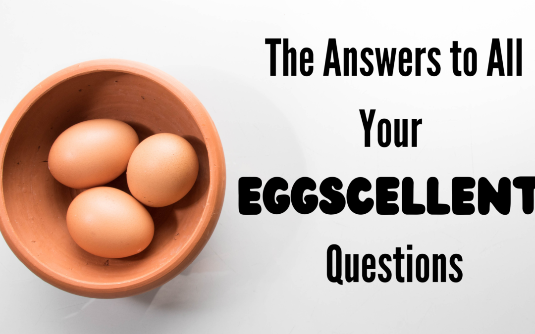 Image of a bowl of 3 eggs with the title The Answers to All Your Eggscellent Questions